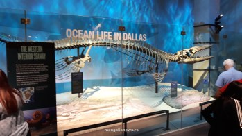 Perot Museum of Nature and Science din Dallas (52)