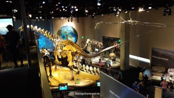 Perot Museum of Nature and Science din Dallas (79)