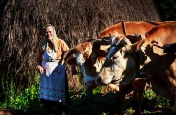 Sorin Onisor Maicile neamului romanesc-60
