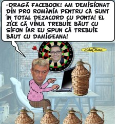 Mihai Matei - damigeana