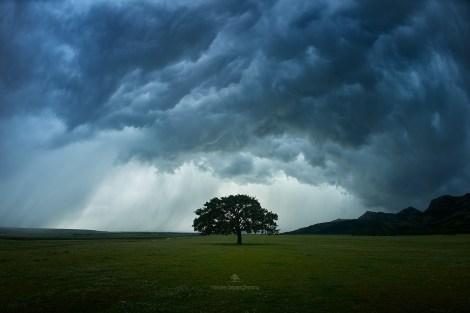 Mircea Bezergheanu - Proiect Dobrogea-22 - A câta furtună