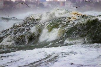 Dan Cristian Mihăilescu - Valuri de 6 metri - Azi m-am convins că Poseidon există5