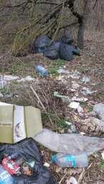 lucrari igienizare Primaria Mangalia-08