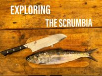 Eduard Armeanu - Exploring the Scrumbia