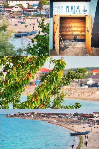 Vlad Eftenie - în Vamă se coc ciresele si se deschide Plaja de carte