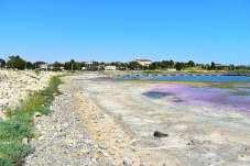 Lacul Techirghiol în pericol2