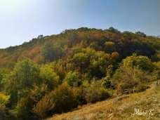 Bisericuțele rupestre de la Dumbrăveni Foto Maria Cazacu-02
