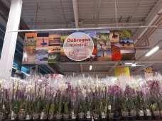 Dobrogea noastra - Expo Ruxandra Georgescu - Auchan Cosntanta Sud-03