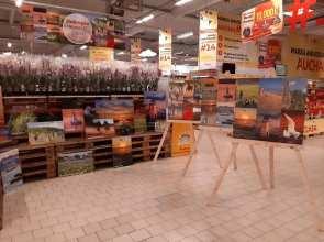 Ruxandra Georgescu- Expo-Auchan-Cosntanta-Sud-02