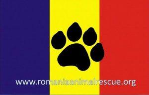 Romania Animal Rescue-sigla