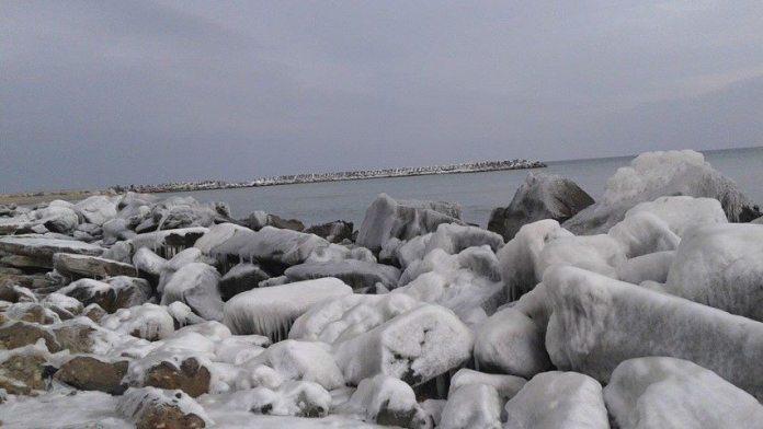 Sculpturi în gheață Foto Nușa Cișmaș-09