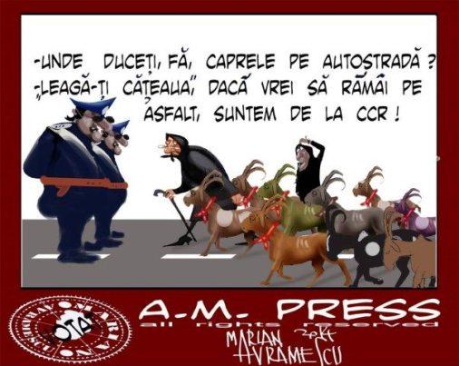 caprele-marian-avramescu