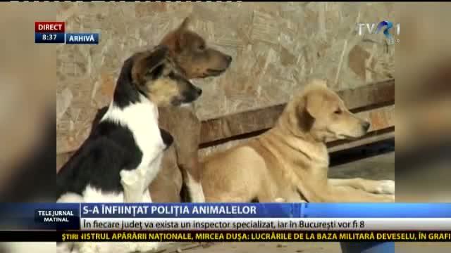 politia-animalelor