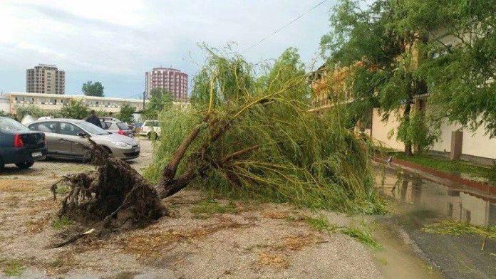 ravagii-furtuna-mangalia-11-07-2014-foto-Andreea-Dima-05 (Small)
