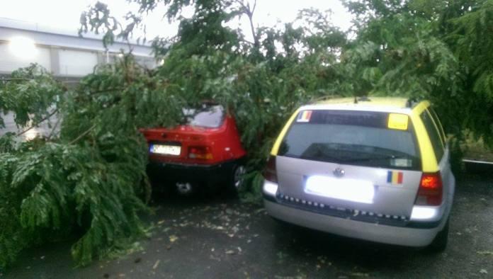 ravagii-furtuna-mangalia-11-07-2014-foto-Catalin-Coches-02