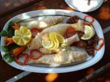 Restaurant_Sat_Pescaresc_Venus-29. peste-in-crusta-de-sare