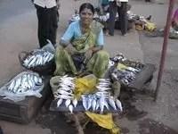 Fisher Women in Kudroli, Mangalore