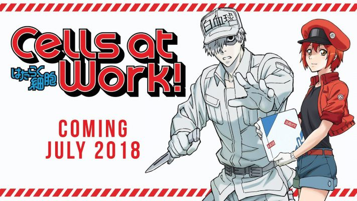 Yamato Animation annuncia l'arrivo di Cells at Work!