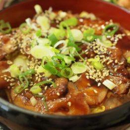 Teriyaki don di ManGiappone riso con pollo marinato