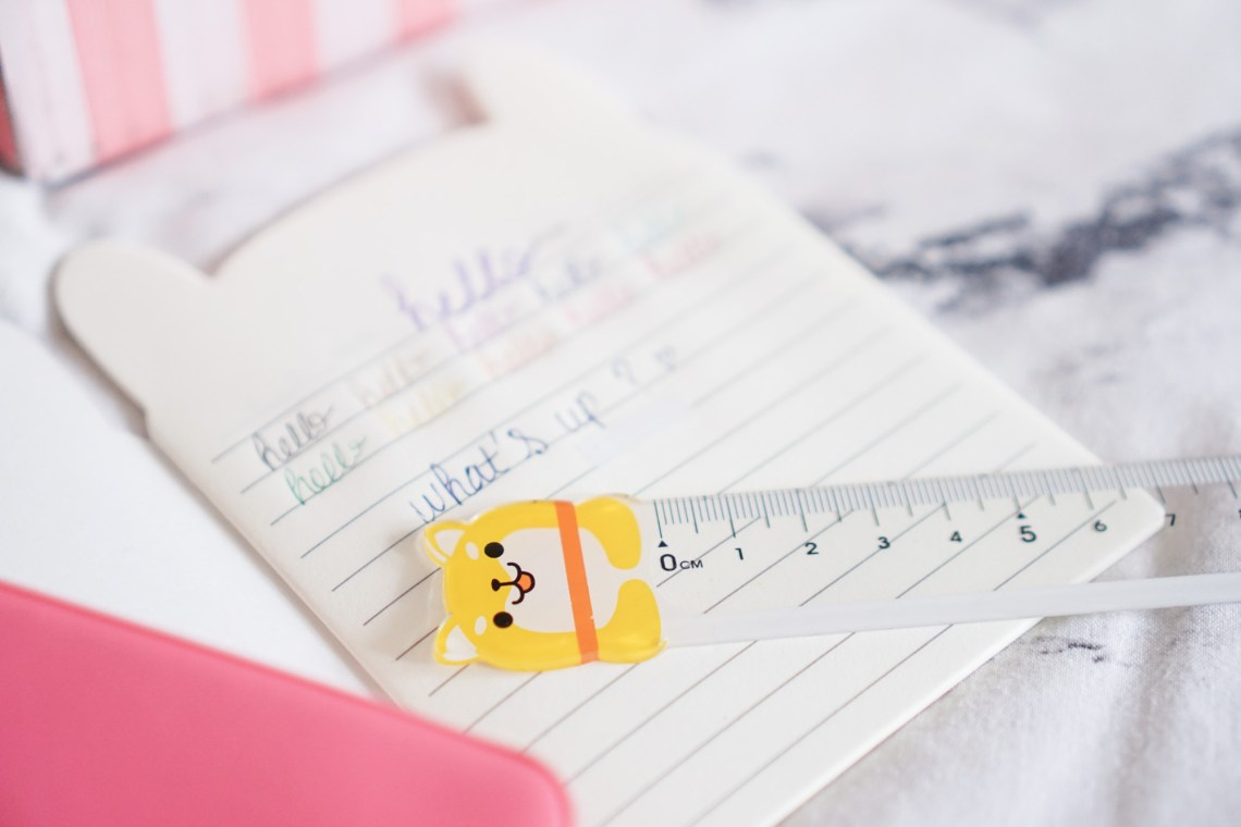 Crazy Kawaii Box Cute Dog Ruler
