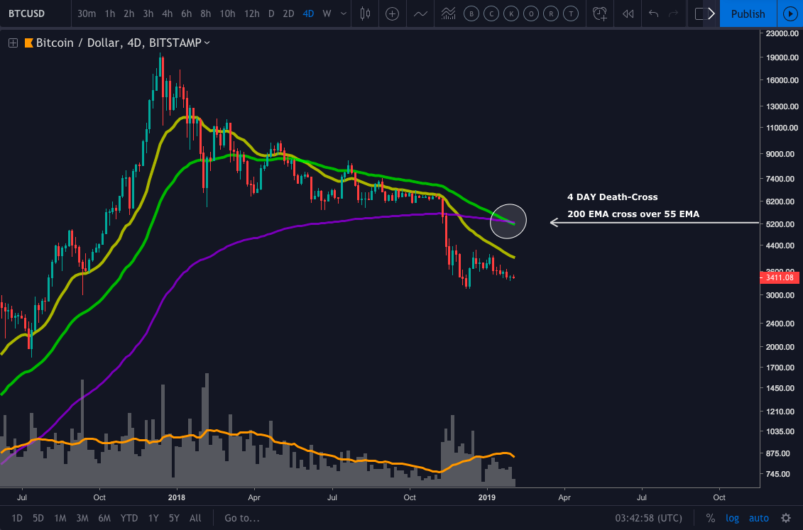 BTC Price Prediction & Analysis Feb 2019