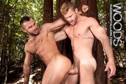 Porno de verano: 'The Woods'
