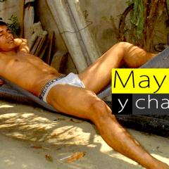 Mayates y chacales en México