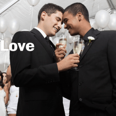 Se renueva la lista de los países que permiten el matrimonio gay