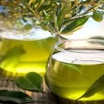 Oliveira: este chá é o mais saudável do planeta, Trata e previne várias doenças!
