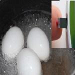 Diga não ao diabetes! Um ovo é o que você precisa para controlar seu açúcar no sangue!