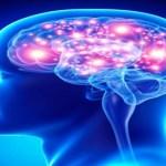 O segredo natural para aumentar a memória em até 80 por cento!