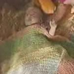 Cachorro invade chuveiro para alertar a dona e salva vida de bebê.