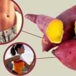 Batata Doce – Melhor horário para consumir e obter os benefícios