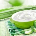 Aprenda a fazer um creme natural de Aloe vera e fique livre das manchas e estrias