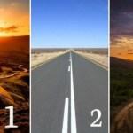 Qual estrada você escolheria? Veja o que a sua escolha revela sobre sua personalidade