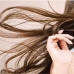 Como restaurar pontas duplas e recuperar seu cabelo!