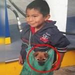 A triste história por trás da foto viral do menino que carrega seu cachorrinho da maneira mais adorável