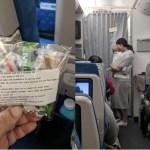 Esta mãe com um bebê de 4 meses ao colo foi o centro das atenções quando distribuiu saquinhos aos passageiros no avião