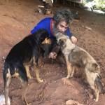Morador de rua usa dinheiro de esmola para comprar comida para cães em Goiânia