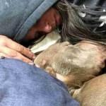 Mulher passou a noite toda com seu cão que estava morrendo para lhe dar conforto