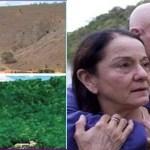 Este casal passa mais de 20 anos plantando uma floresta inteira e animais voltam a habitar o local