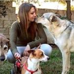 Mulher adota dos abrigos apenas os cães mais velhos, dando-lhes amor e afeto nos últimos anos das suas vidas