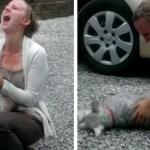 Cadelinha desmaia ao reencontrar a dona após ficarem 2 anos separadas