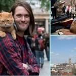 """Morreu gato que mudou a vida de um morador de rua e do """"mundo inteiro"""""""