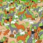 Nesta imagem, tem um cachorro que não se repete. Consegue encontrá-lo?