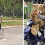 """Pai pobre chora de alegria ao encontrar um ursinho de pelúcia no lixo: """"Vou dar para minha filha"""""""