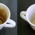 Com um truque simples e rápido, removerá manchas de café e chá das xícaras