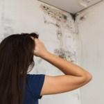 Como acabar com o mofo nos armários e roupas