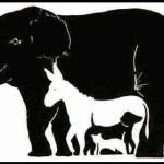 Há 13 animais escondidos nesta figura, quantos você consegue achar?