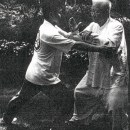 Fu Zhongwen doing push hands